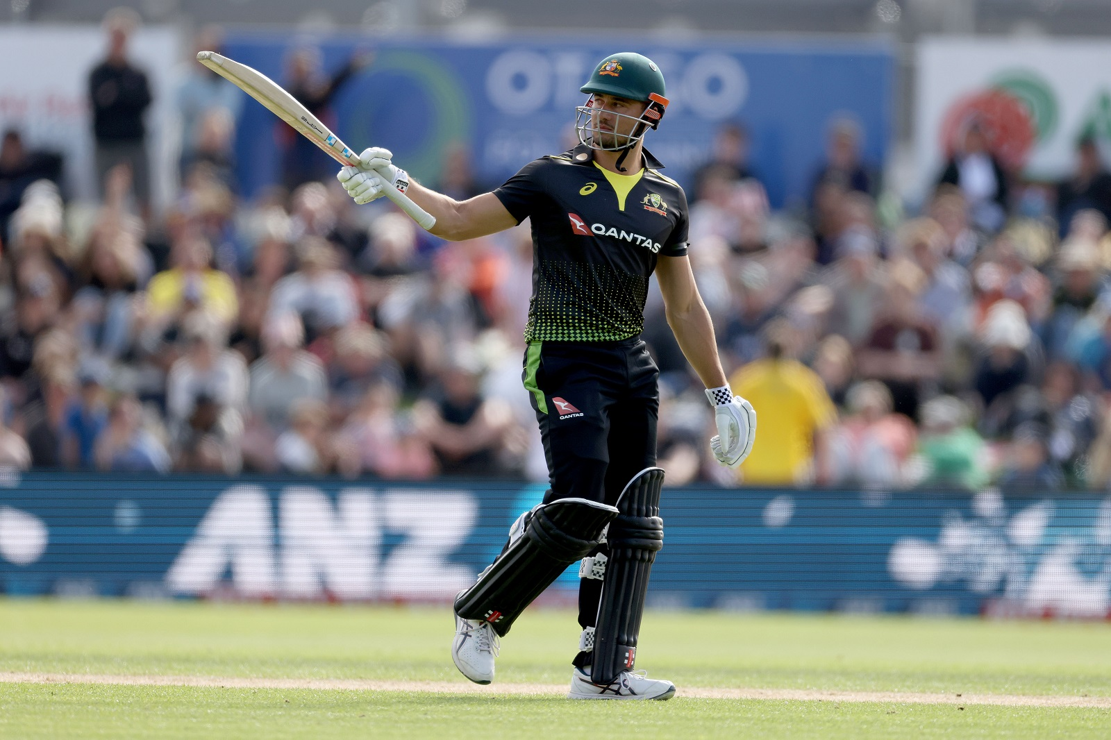 STOINIS NOW T20 WORLD NO.4